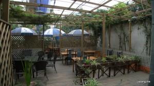 梦之旅国际青年旅社的小花园